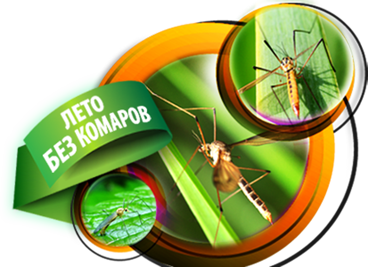 Средства от комаров. Какое средство от комаров выбрать?
