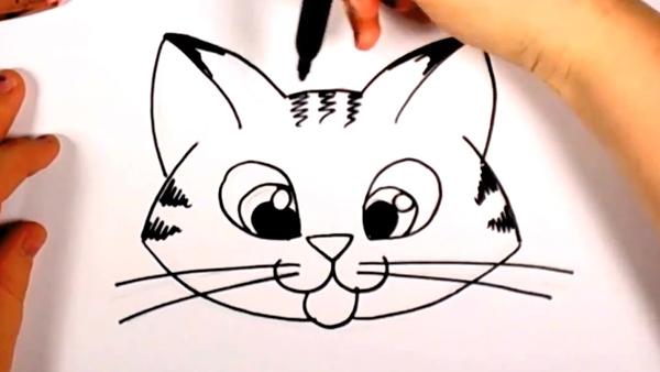 Kitten Behavior  How to raise a Baby Kitten