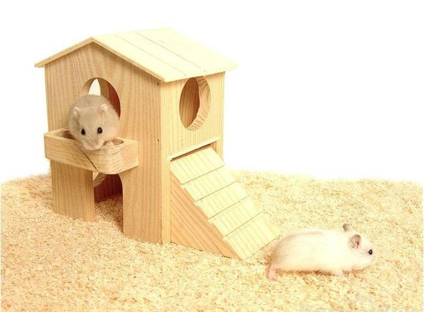 Как сделать для хомячка домик своими руками