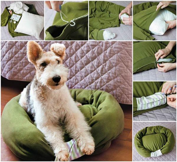 Лежанки для собак и кошек. Лежанки для собак и кошек своими руками: идеи, видео и мастер классы