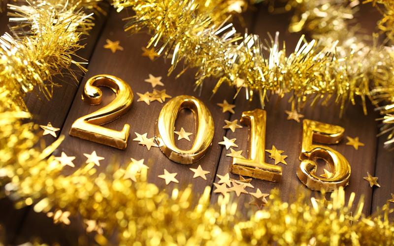 Что одеть на Новый 2015 год. В каком наряде лучше встречать Новый 2015 год?