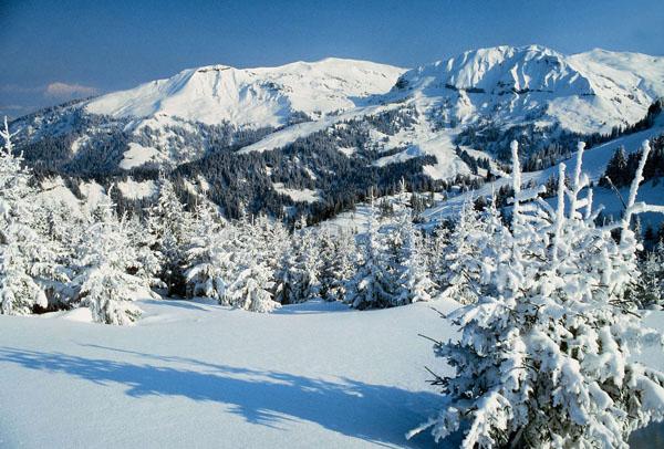 Новый год в Швейцарии. Отдых в Швейцарии зимой