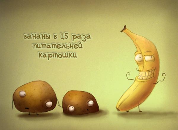 Польза бананов: интересные факты о бананах