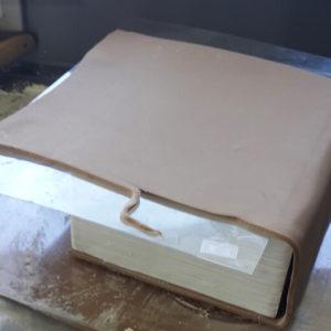 Торт Книга. Торт в виде Книги: как сделать, фото, мастер класс