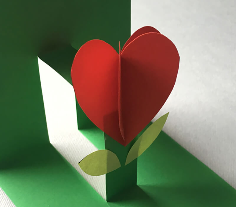 Открытка с тюльпаном сердечком, про нарощенные ресницы