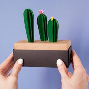 Как сделать кактус? Кактус из бумаги своими руками