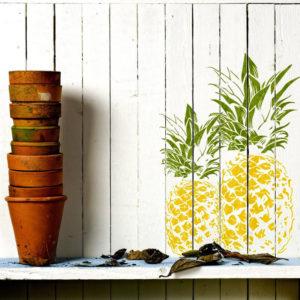 Шаблоны и трафареты ананаса