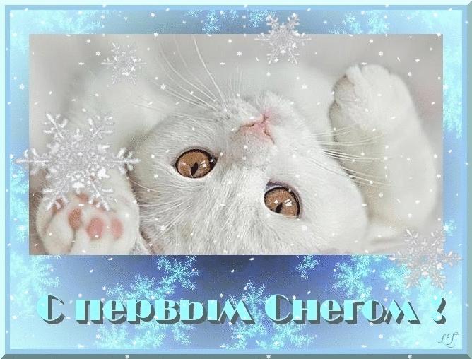 гимнастка первенствовала блестящие открытки с первым снегом вид имеет