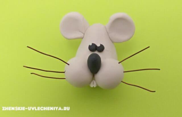 Мышка из пластилина. Как слепить мышку из пластилина?