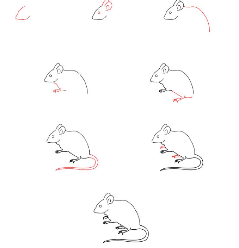 картинки как рисовать мышь поэтапно аукционах стоимость таких