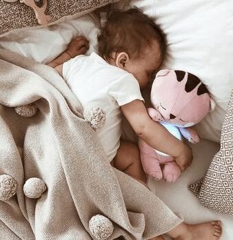 Что подарить на Новый год малышу? Котенок Shema – лучший подарок для самых маленьких